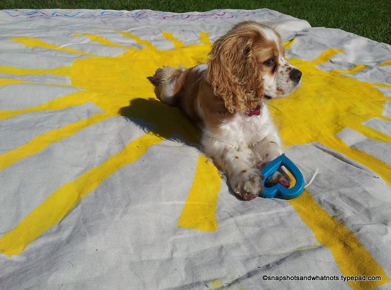 DIY picnic blanket (2)