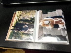 Homemade photo book of Boomer (4)