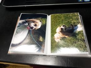 Homemade photo book of Boomer (6)
