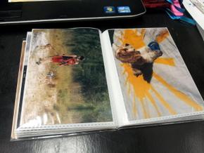 Homemade photo book of Boomer (10)