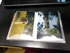 Homemade photo book of Boomer (5)