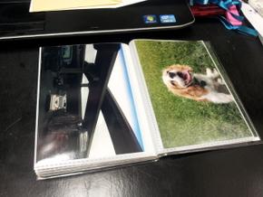 Homemade photo book of Boomer (14)