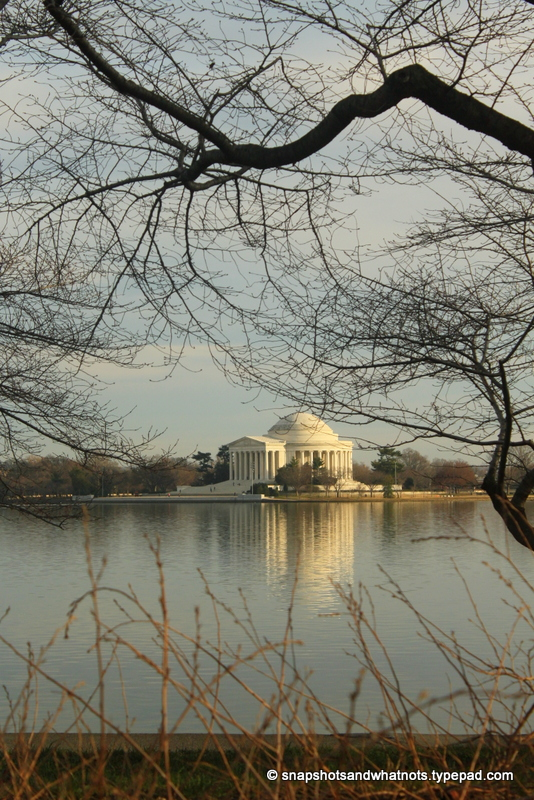 Washington DC at Christmas 2013 (2)