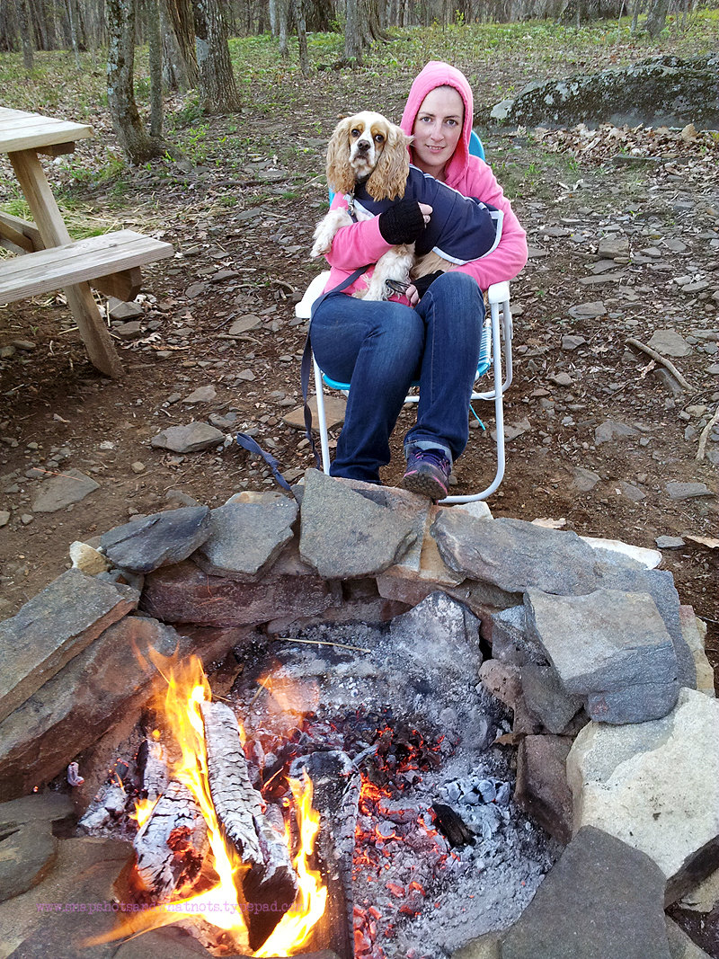 Camping in blue bear mountain camp (3)