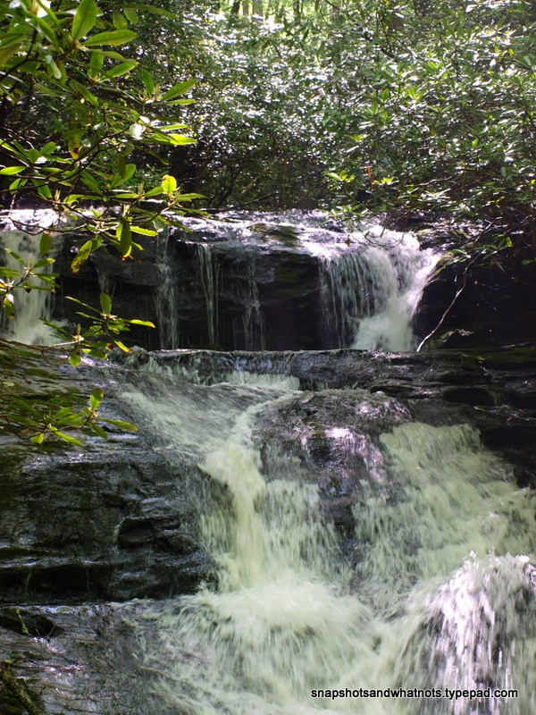 Laurel Falls - Trip to Franklin (4)
