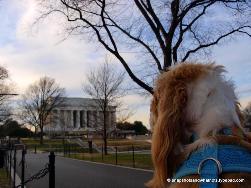 Washington DC at Christmas 2013 (5)
