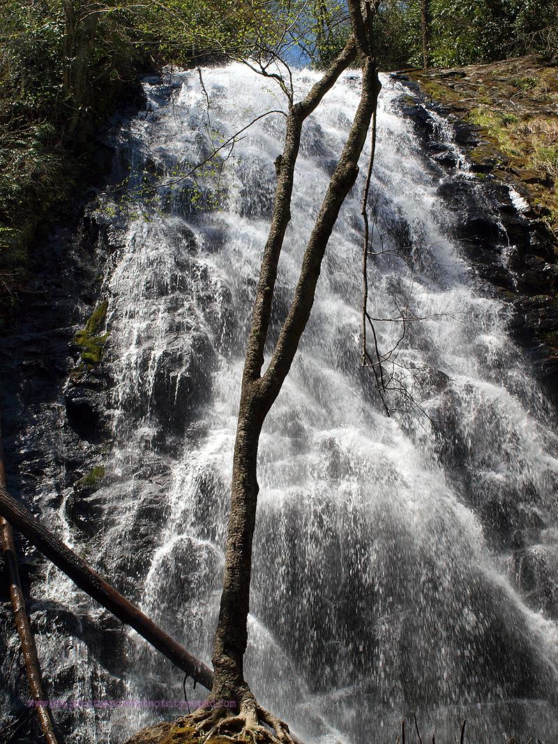 Crantree Falls (4)