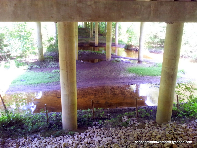 Exploring South Carolina - Tillerman Trail - snapshotsandwhantots (3)