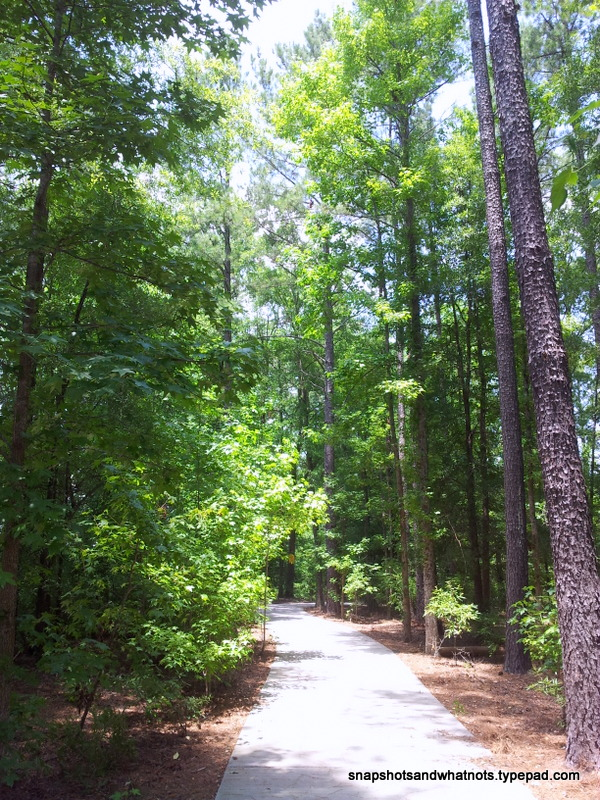 Exploring South Carolina - Tillerman Trail - snapshotsandwhantots (1)